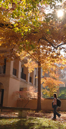 Fall foliage on the Kent State campus